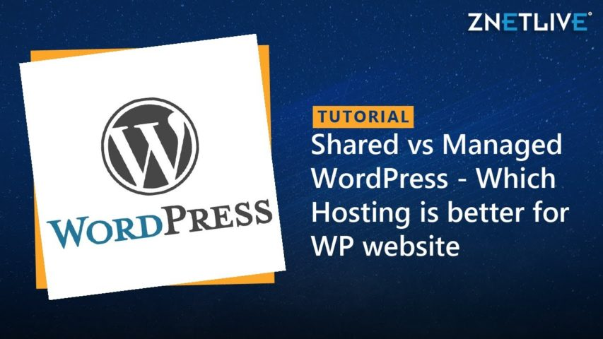 Shared Hosting vs Managed WordPress Hosting - Which one is better for your WordPress website?